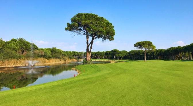 Carya Golf, Montgomerie MAXX and some other courses visited 2019!